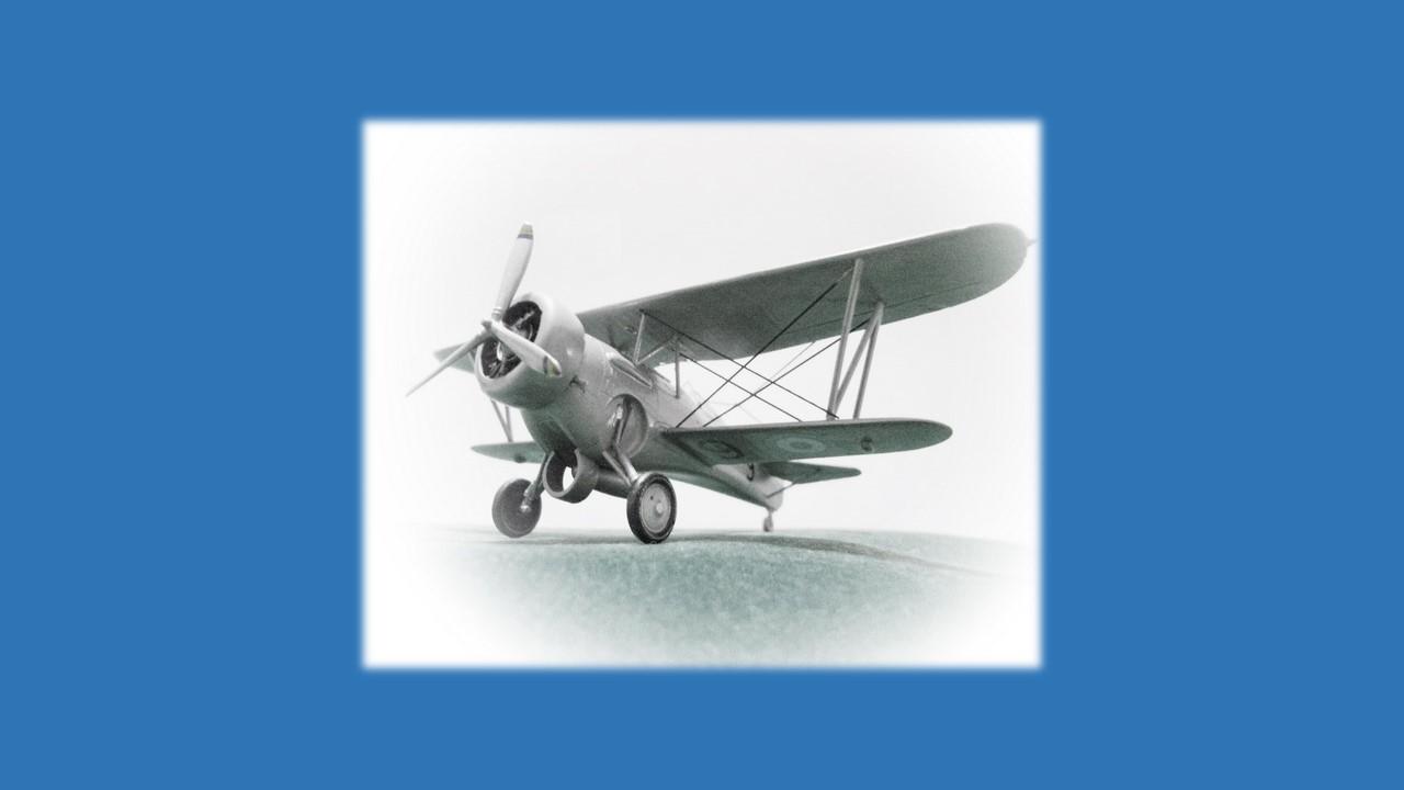 Curtiss Hawk III-10