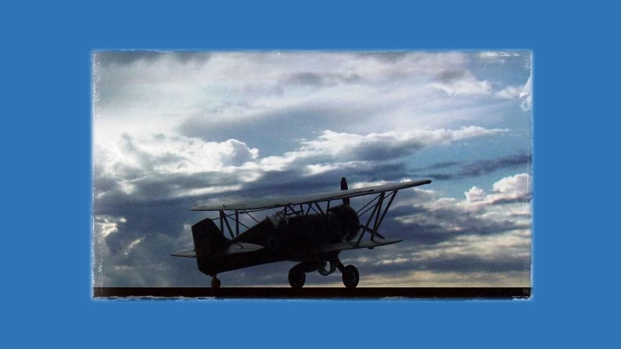 Curtiss Hawk III-11